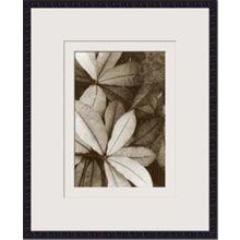 Garden Textures I 22W x 26H