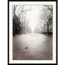 Stroll Through Paris - Champ de Mars at Dawn 20W x 26H