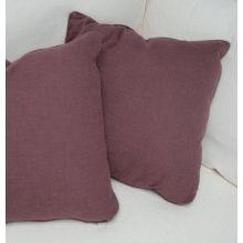 Raisin Pillow