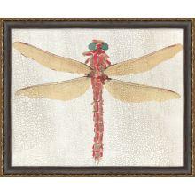 Dragonfly 2 22W X 18H